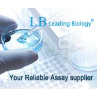 Leading Biology