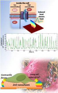 Biocompatible self-generating cell stimulator